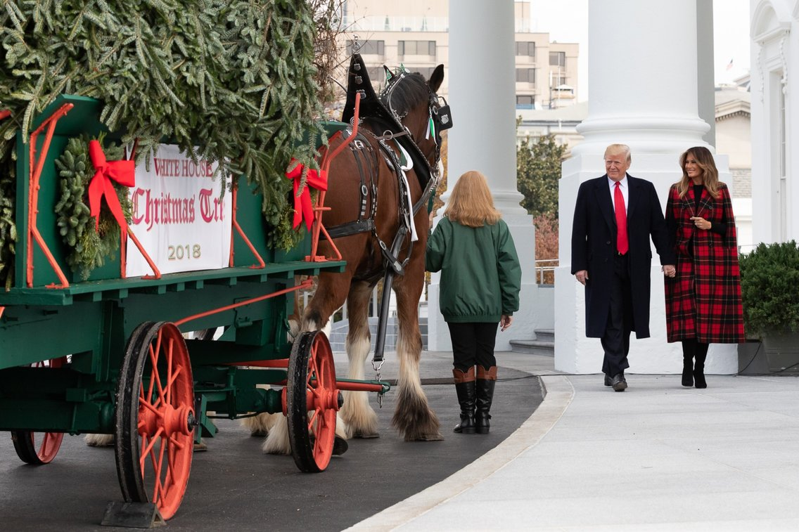 White House Christmas Tree 2018