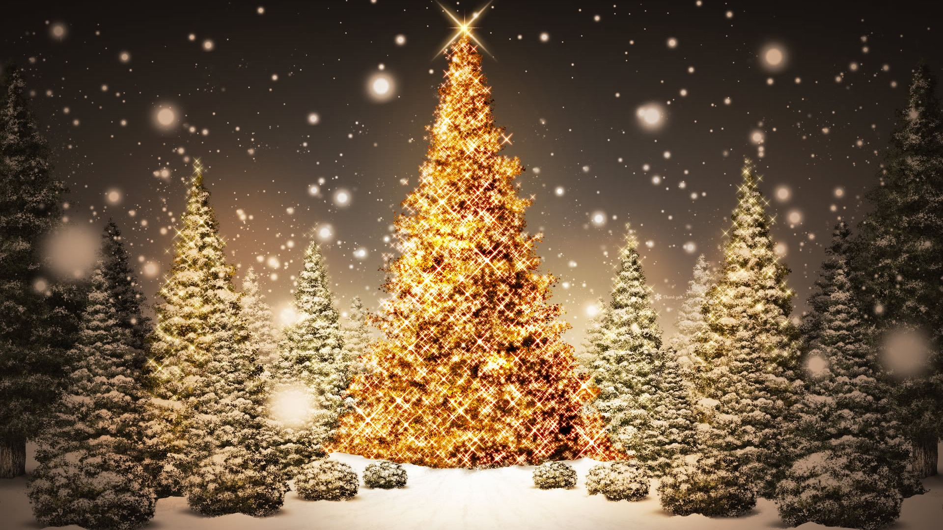 Christmas Trees Light Desktop Wallpaper