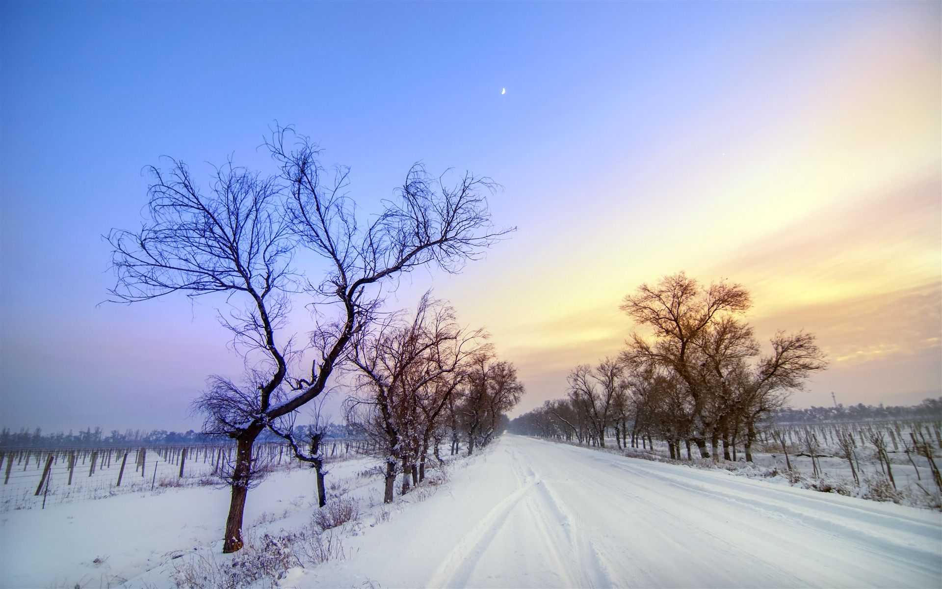 Snow Covered Road Scenery Wallpaper 1920x1200