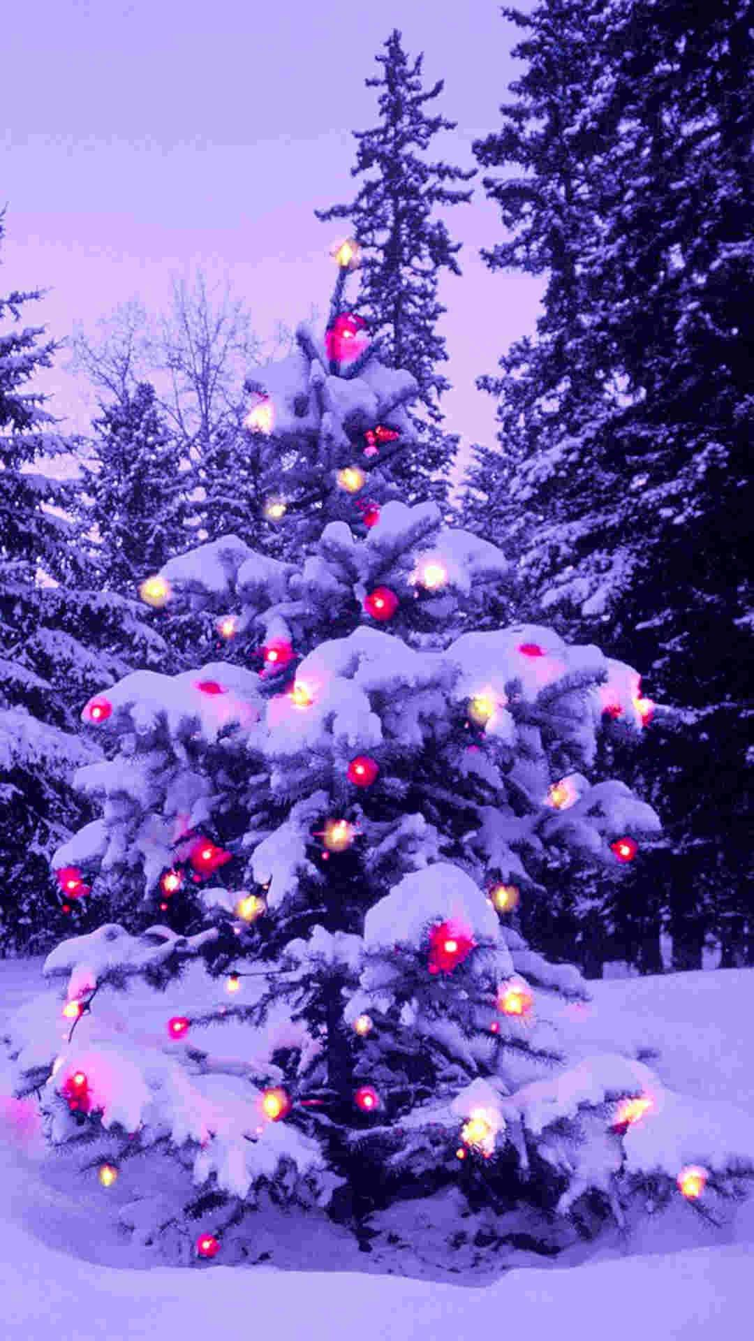 Christmas Snow Tree iPhone Wallpaper
