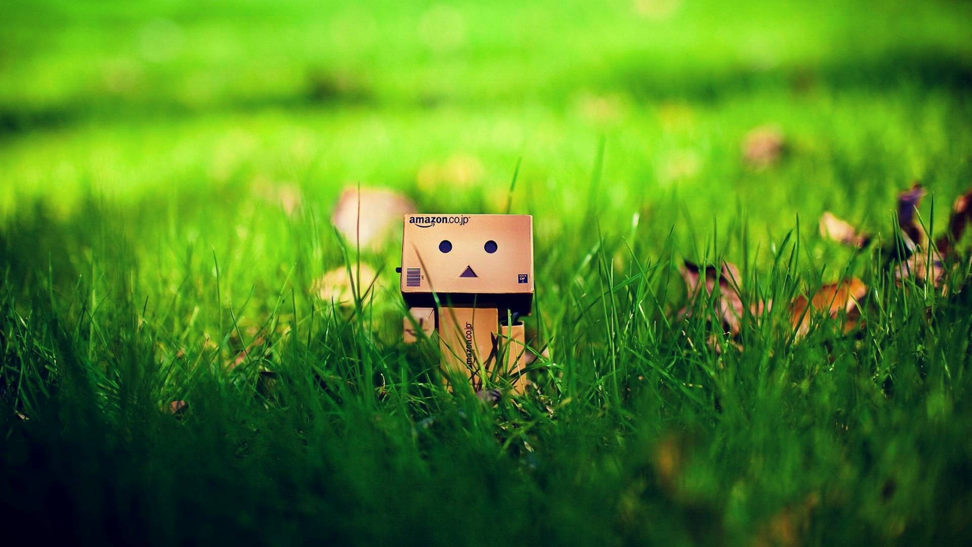 Cute Danbo On Grass Wallpaper 1920x1080