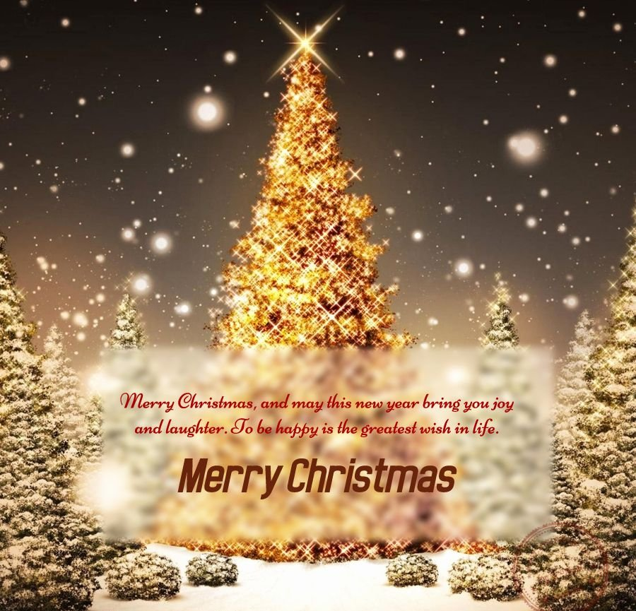 Merry Christmas Greeting image
