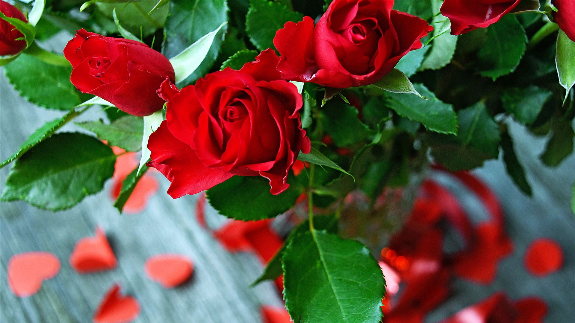 Red Rose Bouquet Decoration HD 1080 Wallpaper