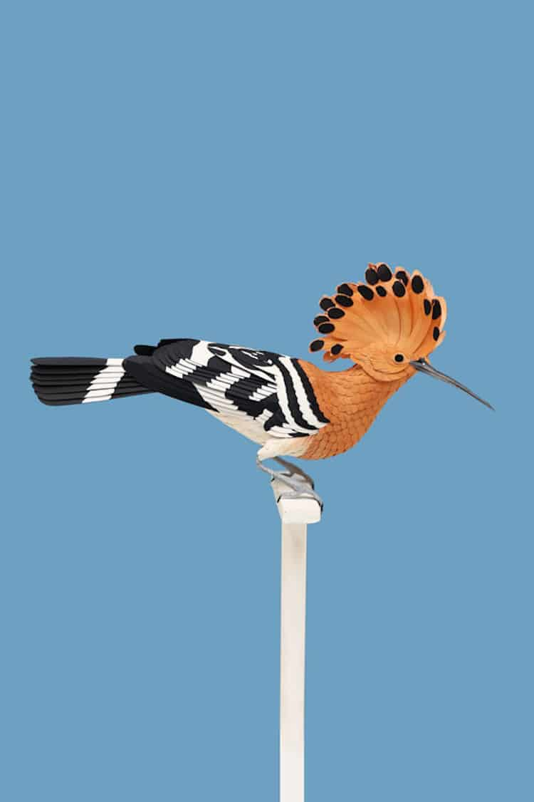 Amazing Paper Bird Art by Diana Beltran Herrera
