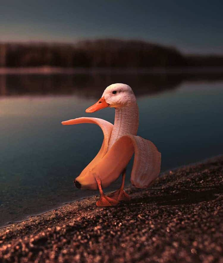 Surreal Photo Mash-Ups Cleverly Blend Animals with Food