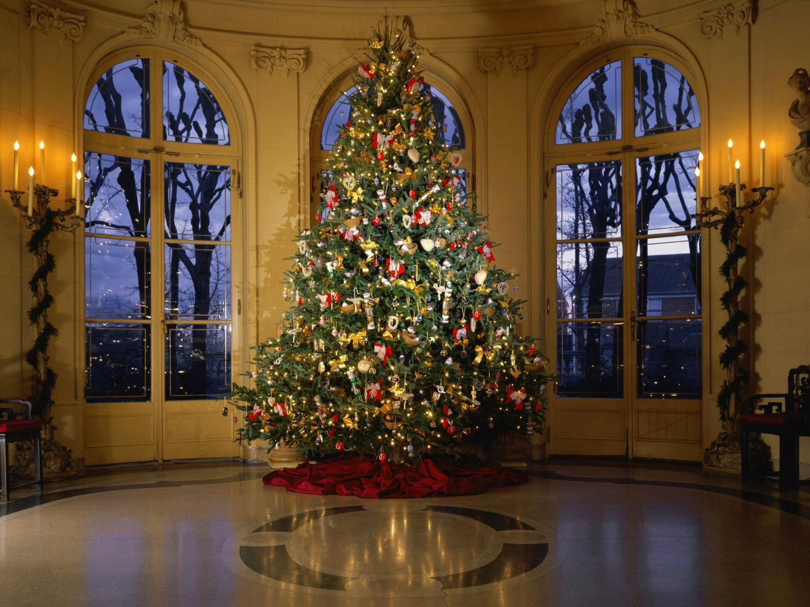Christmas Tree in the House Wallpapers for Desktop
